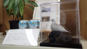 長野県庁の部長室に雷鳥が寄贈された時の写真